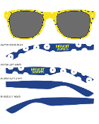 Novelty UV400 Tinted Sunglasses